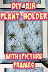 picture frame plant holder