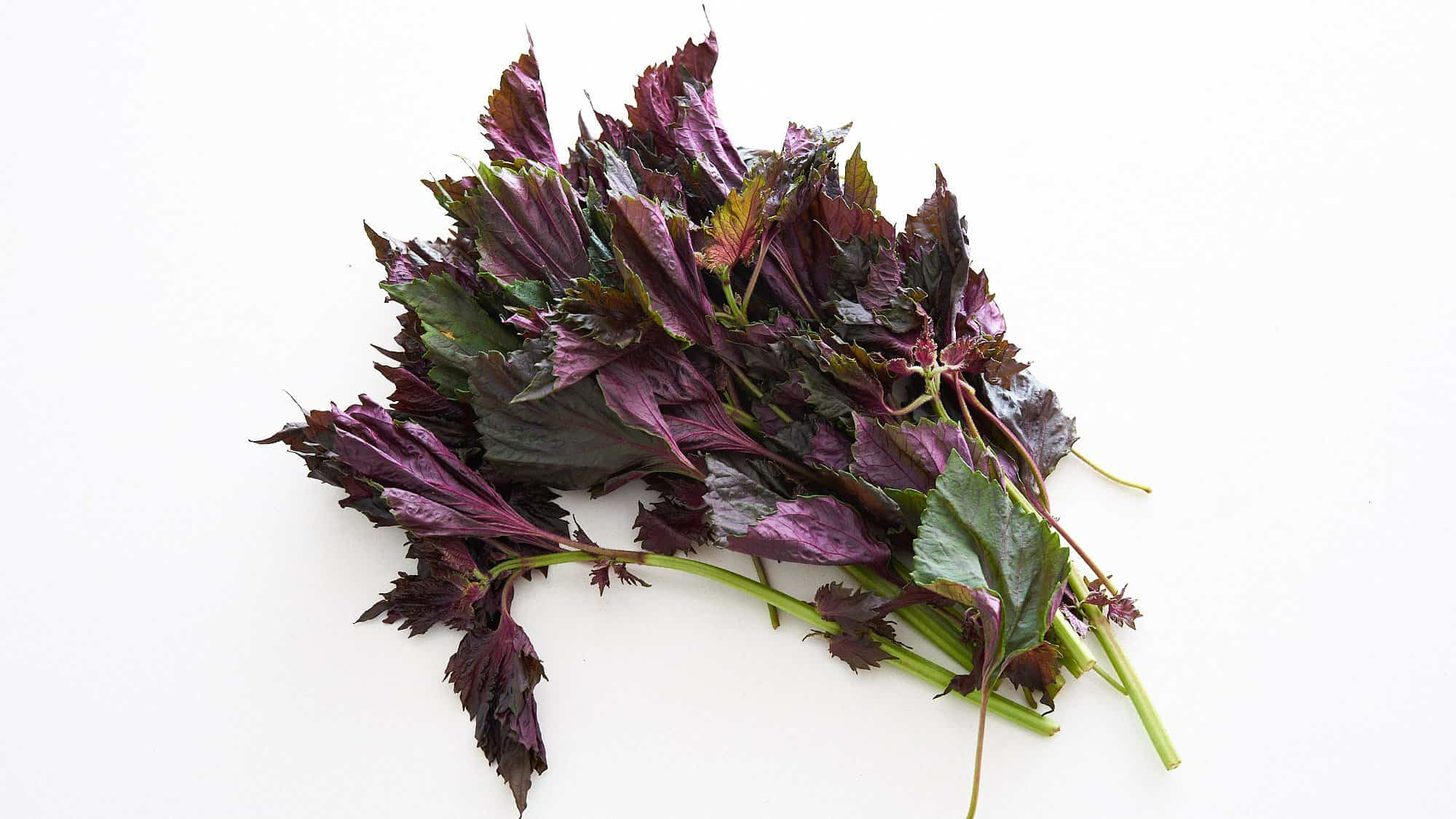 Red shiso leaves adds a wonderful fragrance and stunning pink hue to the ume juice.
