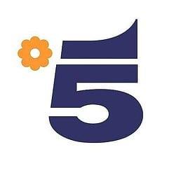 Canale 5 Streaming   Digitale terrestre: Dtti.it