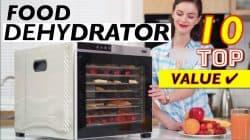 10 Best Food Dehydrators for Healthy Diet