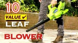10 Best Value LEAF Blowers (Cordless, Electric, Hybrid, Gas)