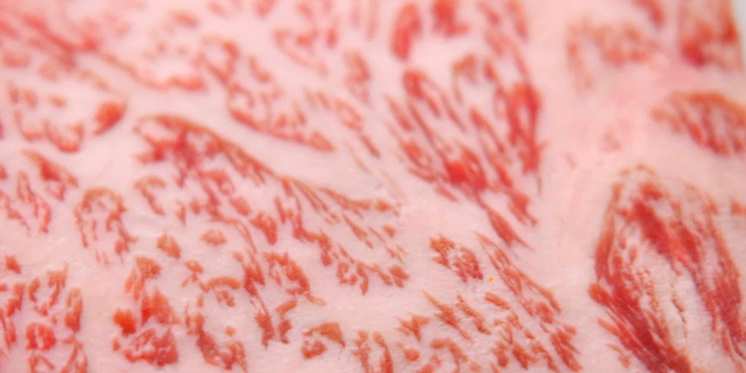 Closeup of marbling of A5 Grade Wagyu Sirloin.