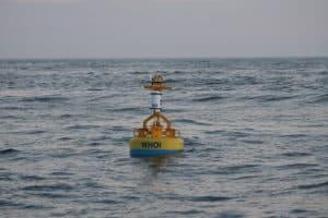 New Ocean Buoy Monitors Whales off Md.'s Atlantic Coast