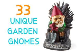 33 unique garden gnomes