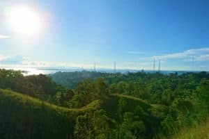 View of Green Jungle and the Ocean