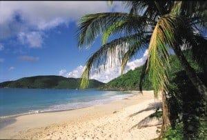 Beach, USVI, USVI beach, beach in USVI, virgin islands with kids