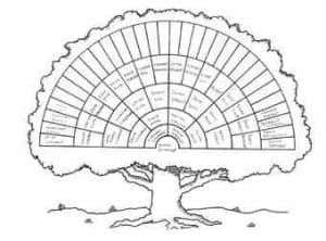 Genalogy Tree