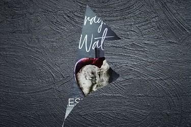 Cover reveal   La ragazza Watson di Leslie Wolfe