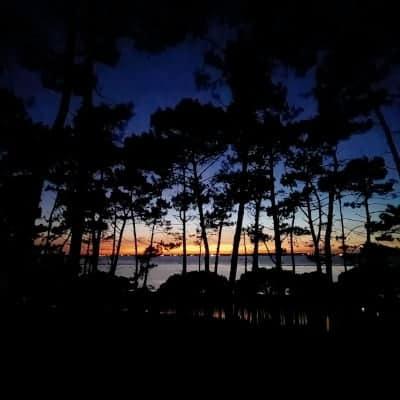 Coucher de soleil sur le Bassin d'Arcachon depuis la forêt du Parc Péreire à Arcachon