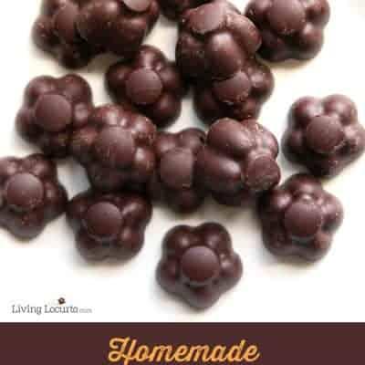Dark Chocolate Citrus Candy | No-Bake Recipe