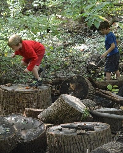 Kids Hiking and Exploring the Woods with Mom