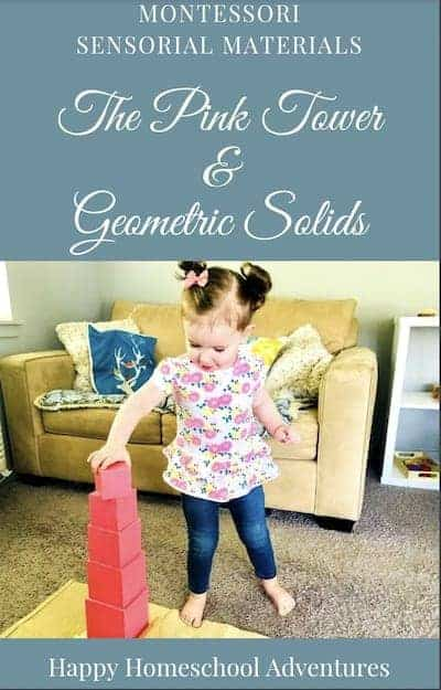 Pink Tower and Geometric Solids Ebook Cover