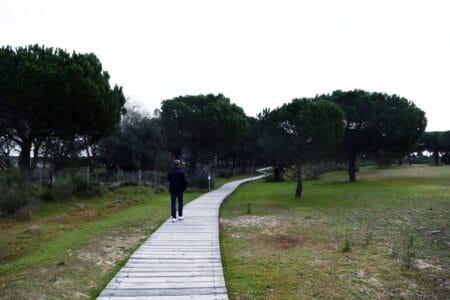 Nationalpark Donana