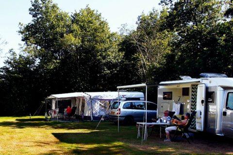 Camping Rotandorp Kampeerveld
