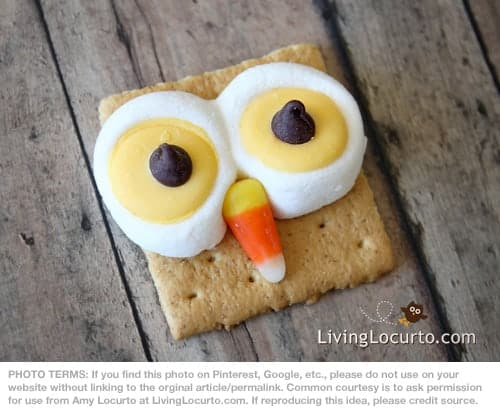 Owl S'mores Recipe by Amy Locurto at LivingLocurto.com - Such an Easy Fun Food Idea for a birthday party, fall party, Thanksgiving or Halloween!
