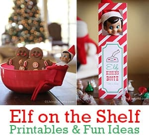 Over a Month of Elf on the Shelf Printables and Fun Ideas for kids at Christmas! LivingLocurto.com