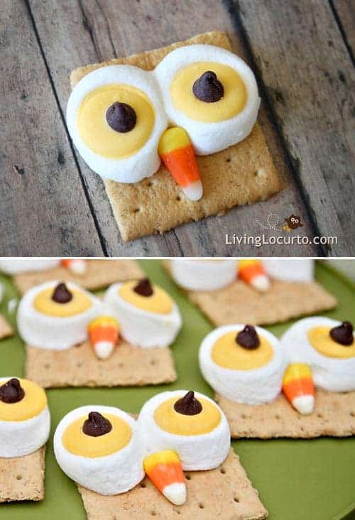 Cute Owl S'morestreats are a HOOT to make! Easy recipe for S'mores that look like owls! Fun food idea for Halloween, Thanksgiving or any birthday party. Recipe by LivingLocurto.com