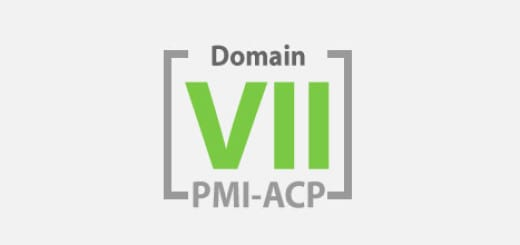 Domain VII Continuous Improvement (Product, Process, People)