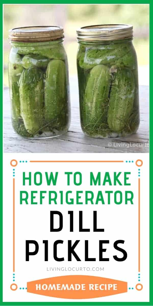 Jars of Refrigerator pickles - Easy Homemade Dill Pickles