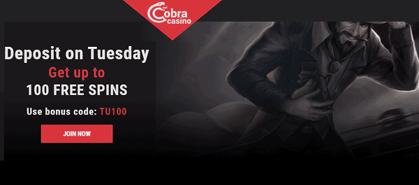 100 free spins on Tuesday