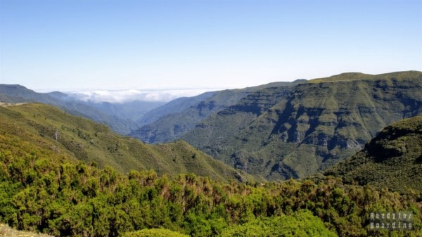 Paúl da Serra - Madera