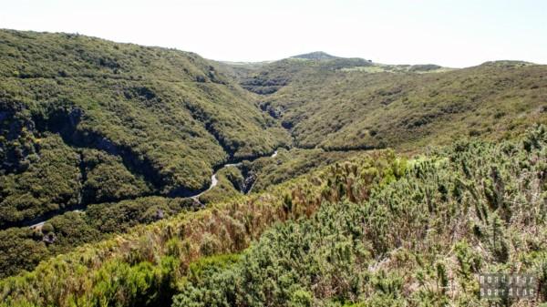 Widok z Paúl da Serra - Madera