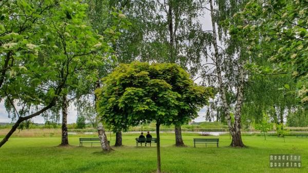 Lewityn, Pabianice
