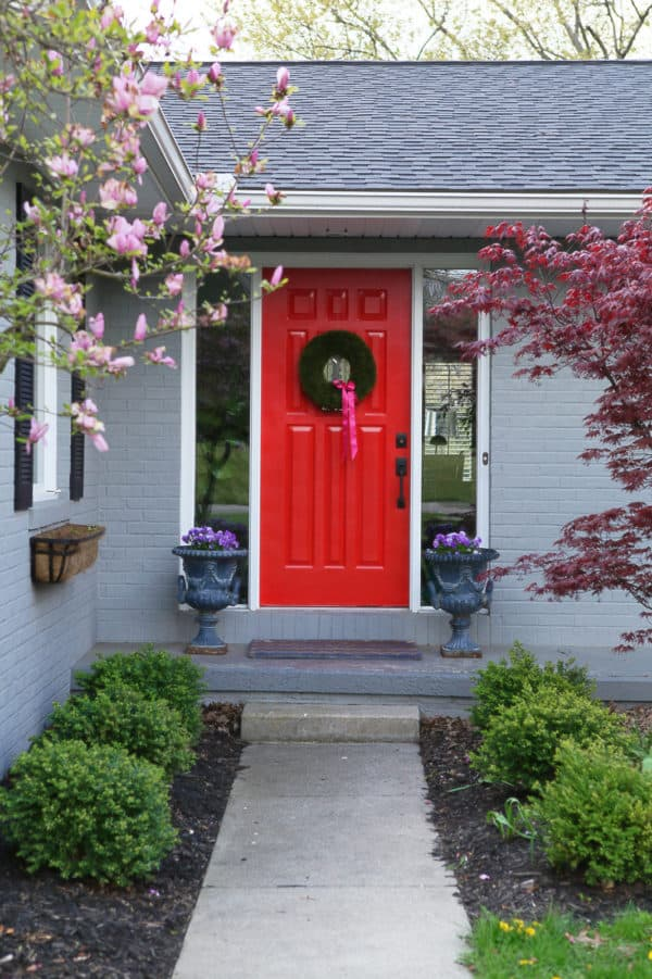 plant a japanese maple tree to enhance the classic red door for a timeless house look