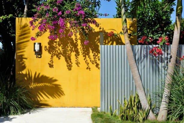 combination of corrugated metal and yellow wall fence