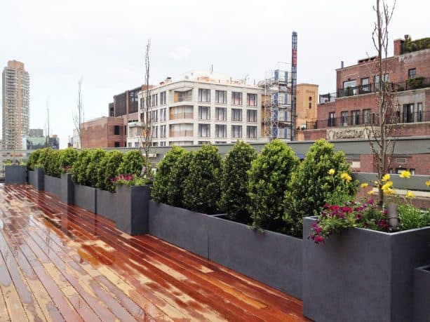 the use of planters and plant as natural deck railing screen