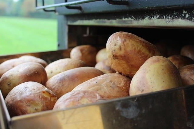 How Microwave Jacket Potato - BillLentis.com