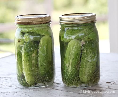 Homemade Refrigerator Pickles Recipe! Easy old fashion family recipe for a crunchy treat. Makes great gifts.