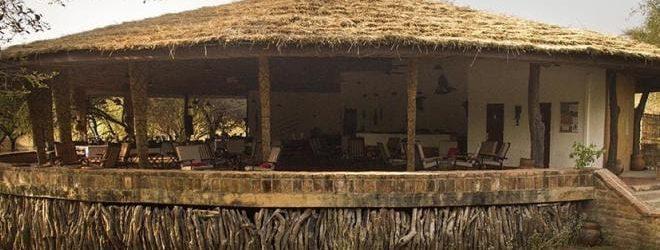 Tinga Camp Overview