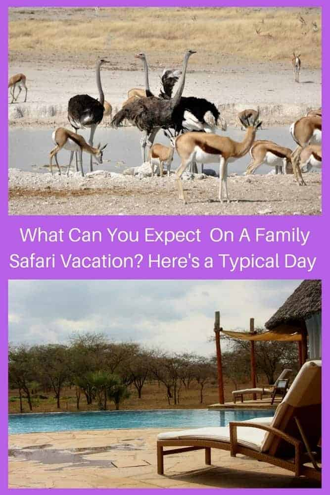 An african safari vacation offers days full of tracking animals and taking photos and relaxing at camp. Here is what to expect if your family takes a safari vacation. #safari #vacation #kids