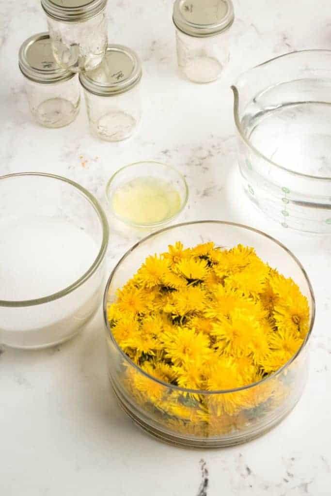 Ingredients for dandelion jam.