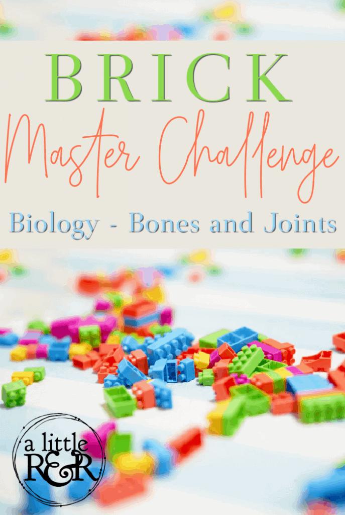 Brick Master Challenge Cards Biology Bones and Joints