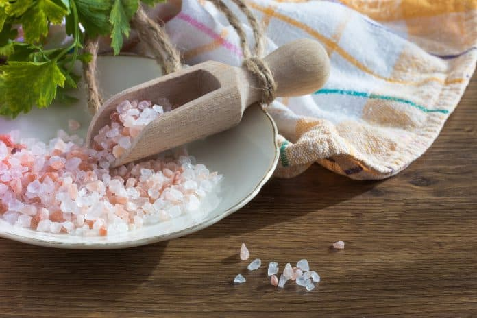 Can You Grind Salt In A Blender - Bill Lentis Media