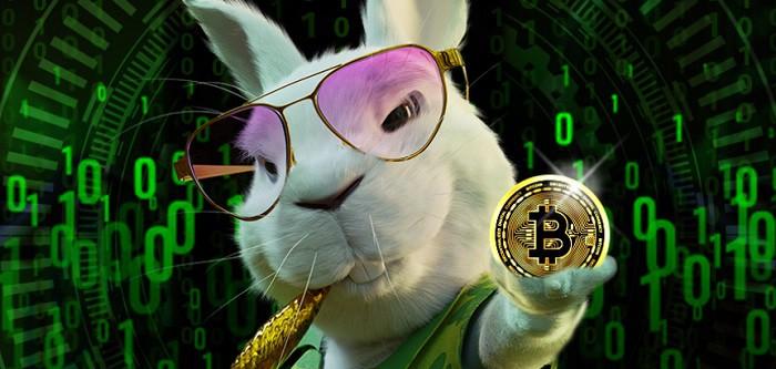 Supremo Crypto