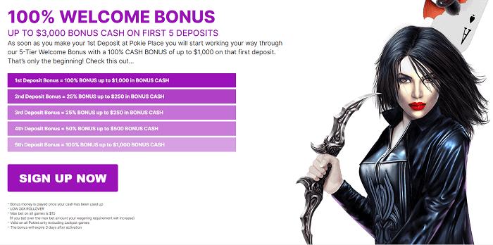 100% Welcome Bonus on 1st Deposit