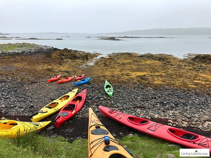 Kayak with sea seals in Arisaig Bay. 5 Best Outdoor Scotland Family Vacation Ideas! Amazing nature trips in Scotland for families. Kid friendly Scottish highlands vacation ideas and travel tips.