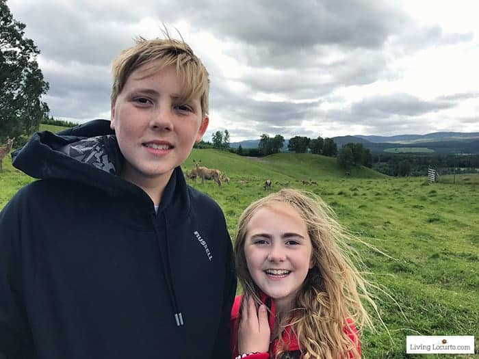 Feed the Red Deer inCairngorms National Park. 5 Best Outdoor Scotland Family Vacation Ideas! Amazing nature trips in Scotland for families. Kid friendly Scottish highlands vacation ideas and travel tips. Amy Locurto Travel Blogger