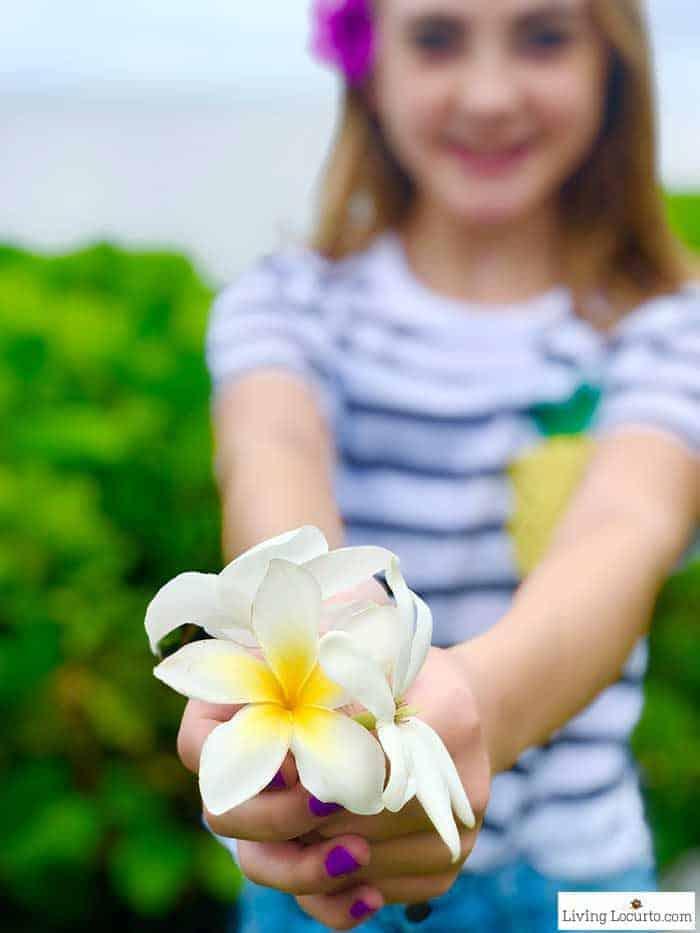2 Day Oahu Itinerary - Honolulu Hawaii Travel Tips - Living Locurto blog