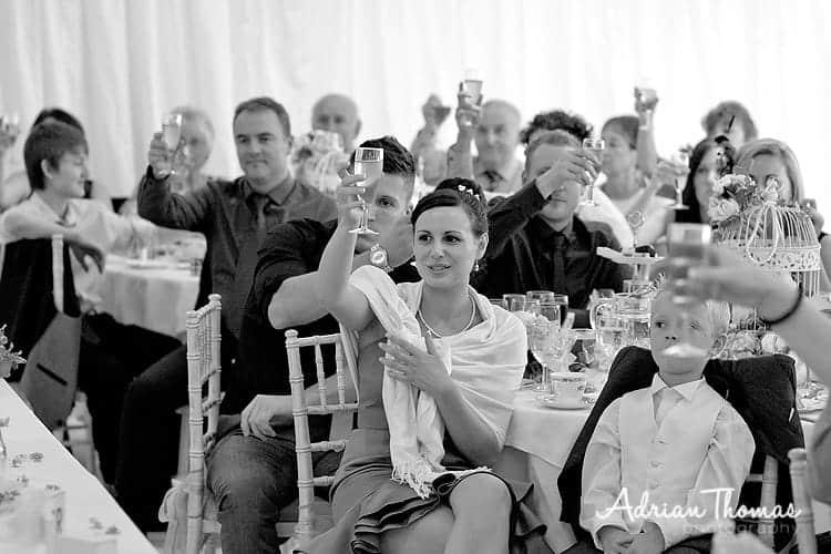 Raising a glass toast