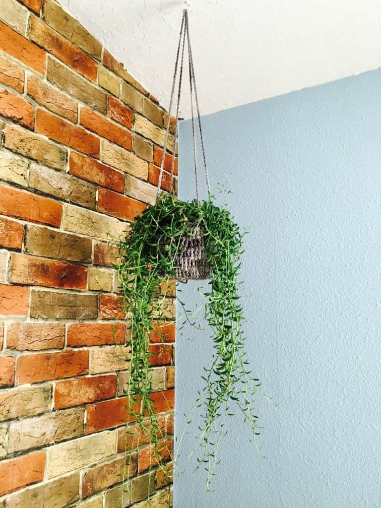 crochet plant hanger hanging from ceiling in front of brick wall