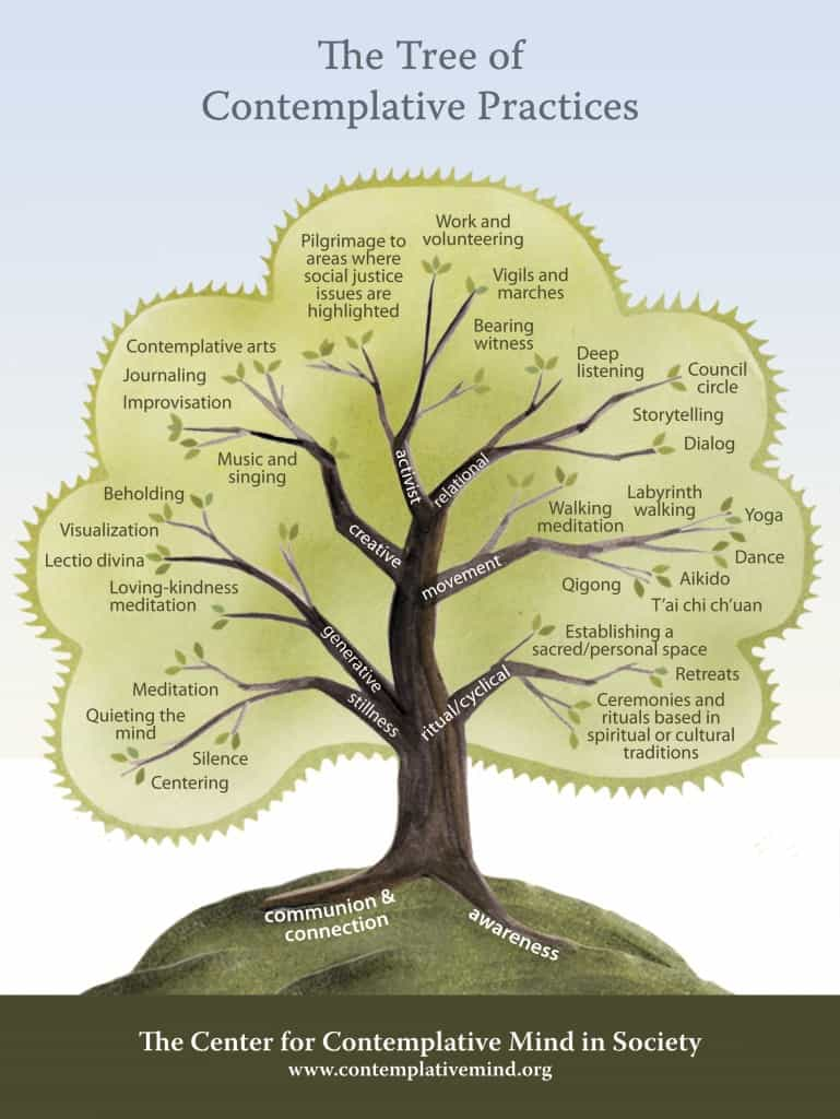 The tree of complative practices