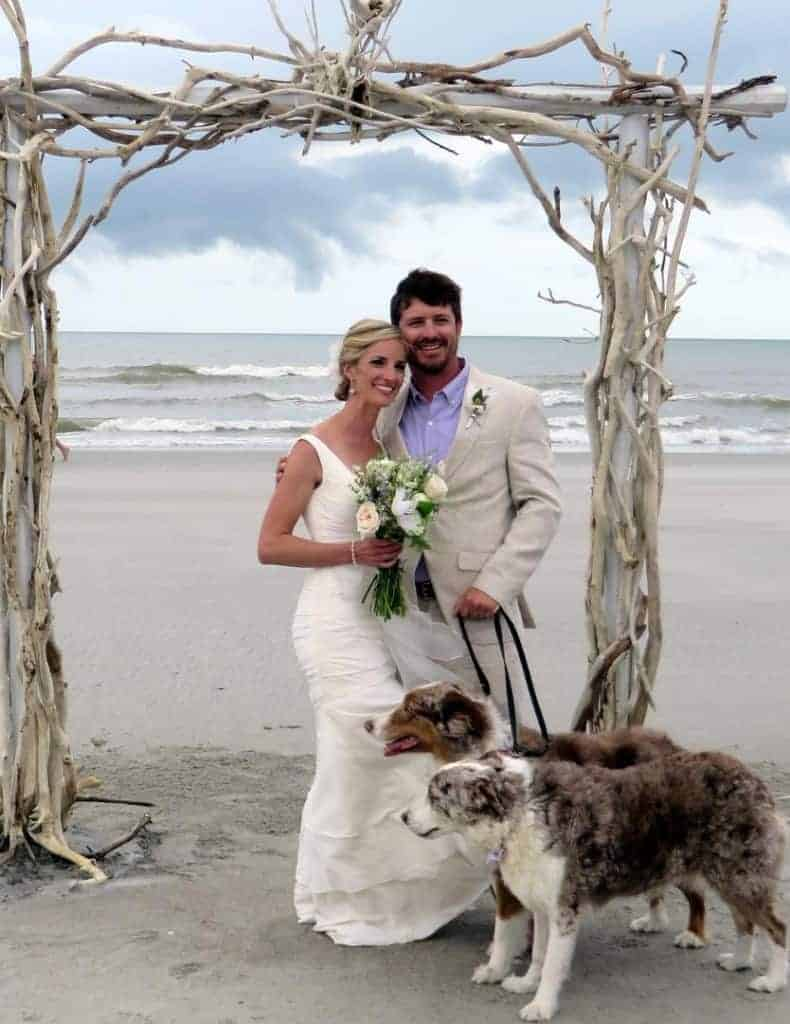 Bride and groom under beautiful arch posing with their two dogs on the beach. Wedding dinner cruise Charleston SC