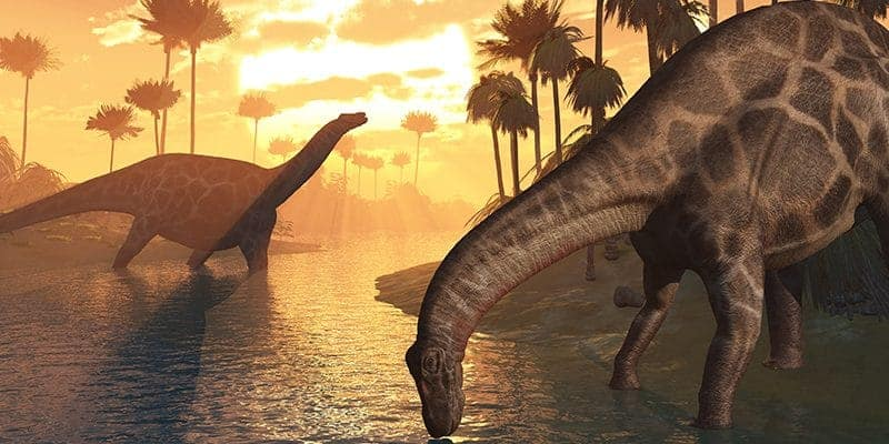 Dinosaurs at the Dawn of Creation - teaching our kids a biblical view