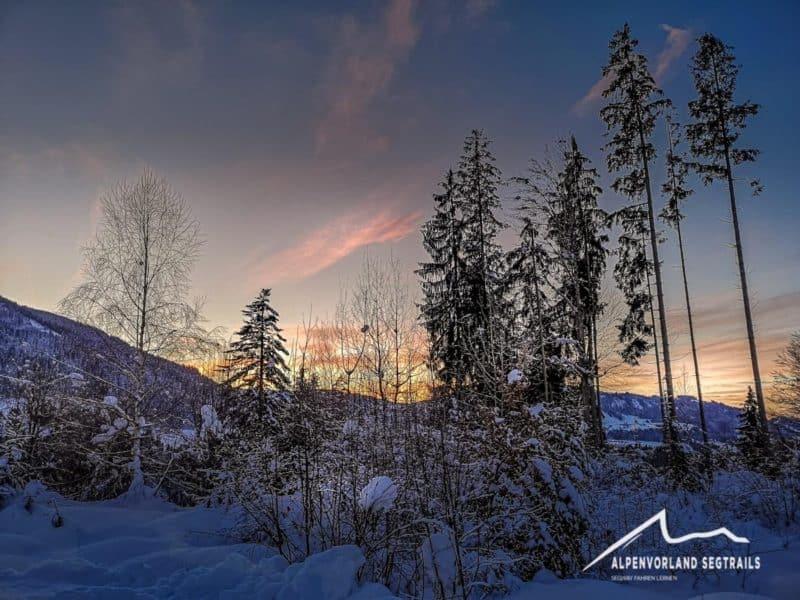 Sonnenuntergang im Winter mit Bäumen