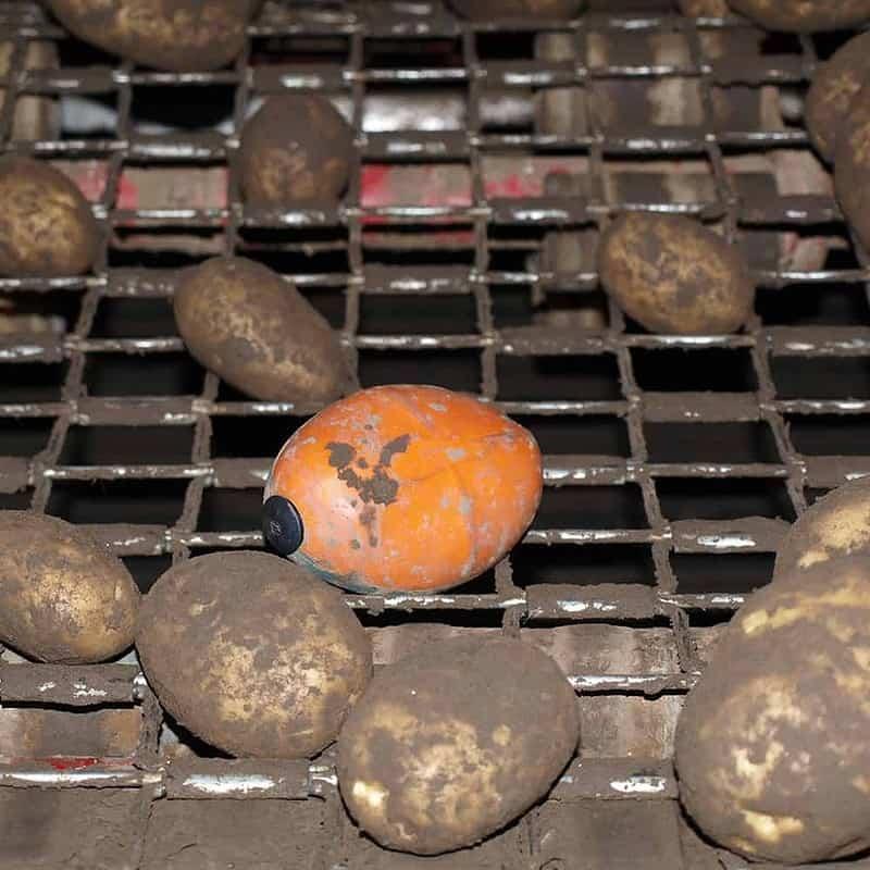 tuberlog electronic potato inside a grading unit