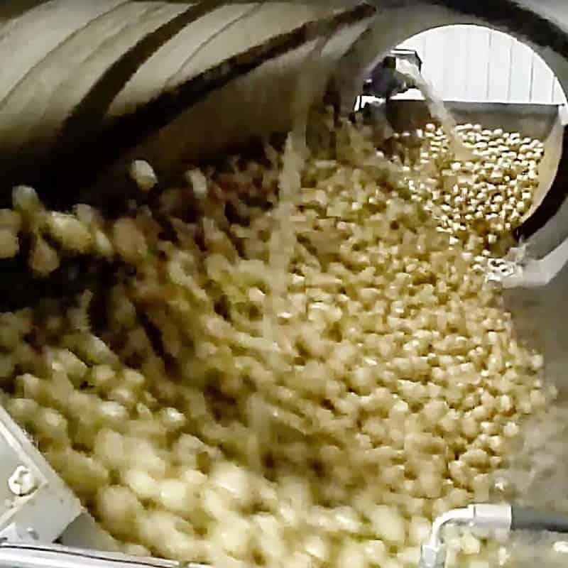 tuberlog electronic potato inside a potato washer